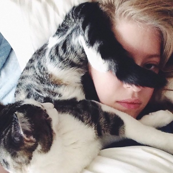 Cats-Personal-Space-35