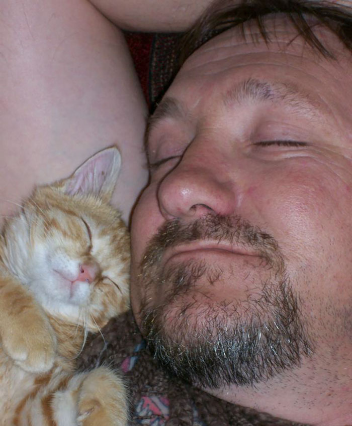 people-who-didnt-want-cats-7