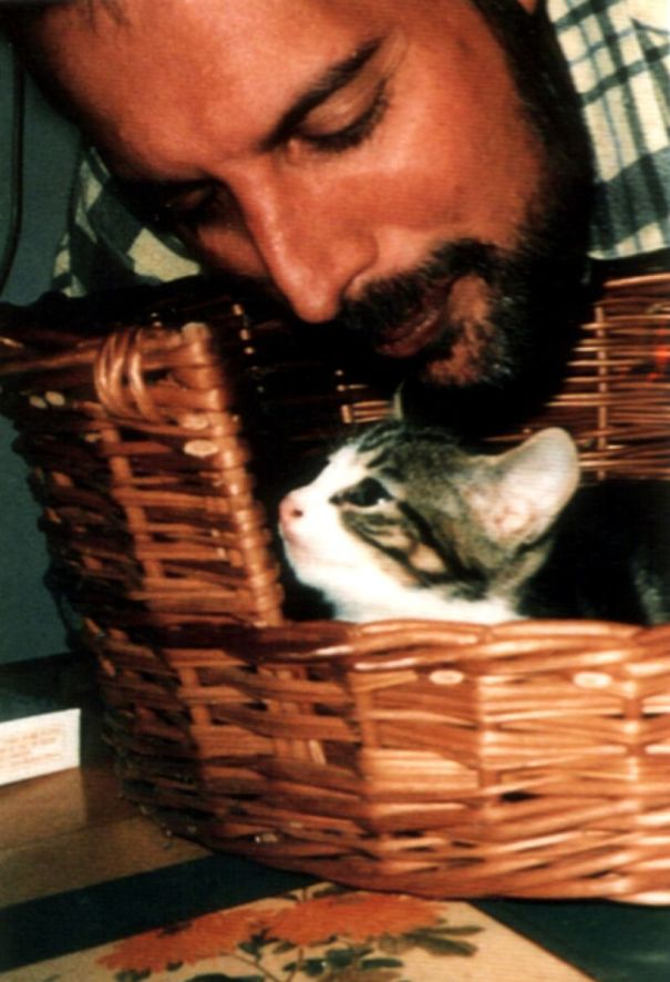 freddie-mercury-cats-6