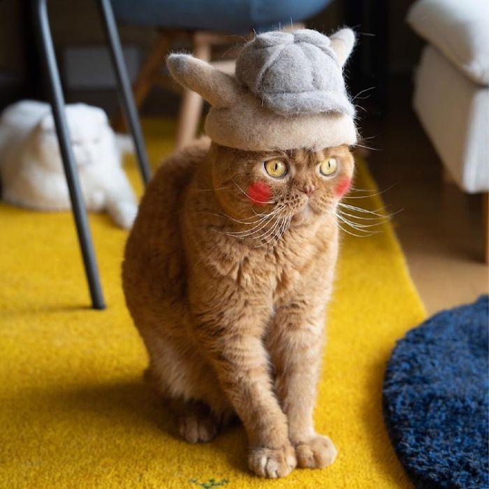 cat-fur-hat-16