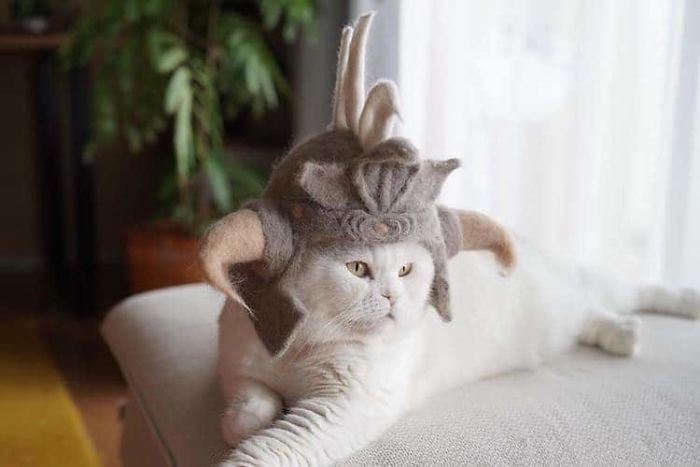 cat-fur-hat-2